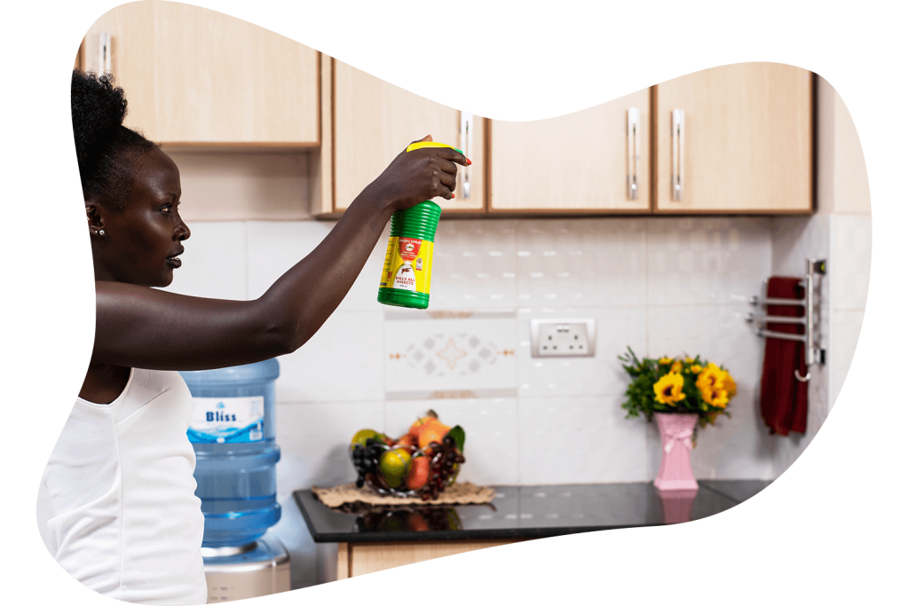 Spraying natural pyrethrum insect spray in the kitchen